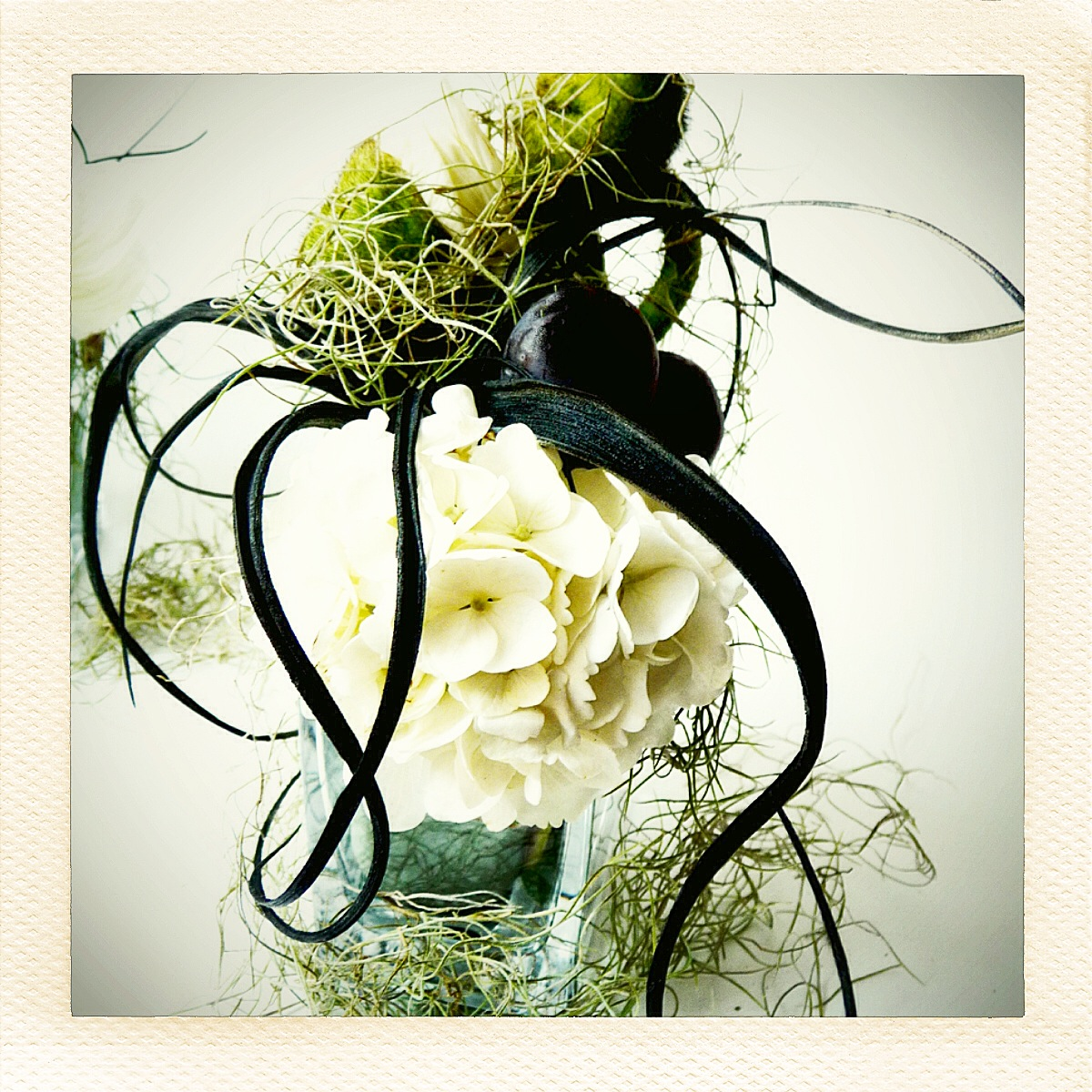 sculptural flowers insta web II